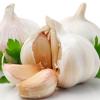 ブレインフォグの原因「カンジダ菌」と戦う奇跡の食材5選